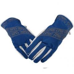 купить перчатки Bogner для катания на горных лыжах